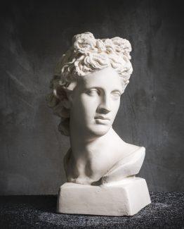 Küçük Apollo Büstü