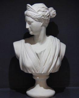 Diana Büst
